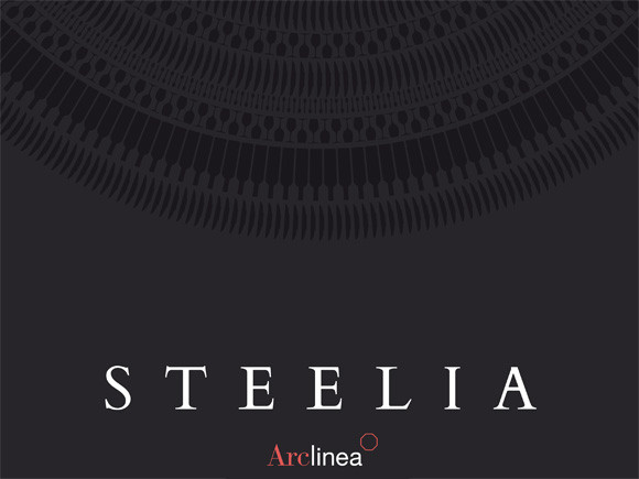 """Steelia"": la nuova brochure è on line!"