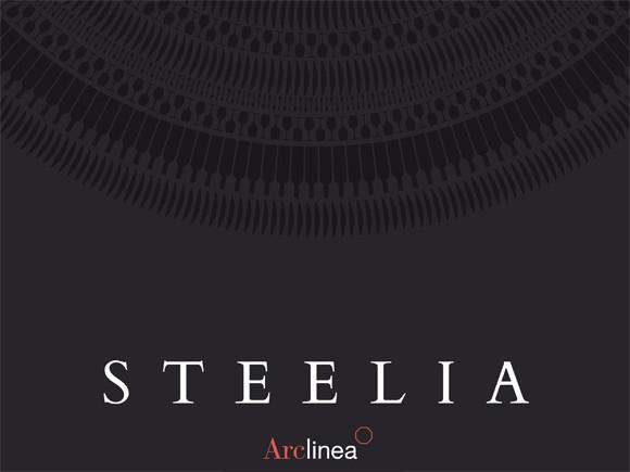 """""""Steelia"""" pdf brochure available!"""